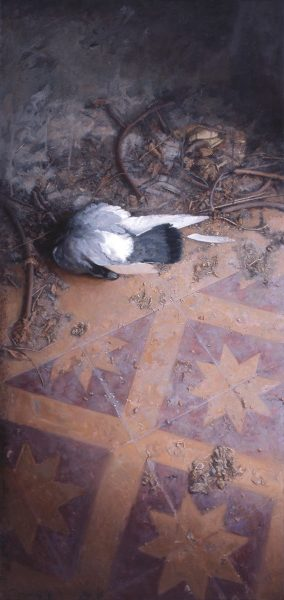 Dove in the courtyard of the school | DAO